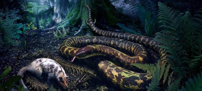 地球上第一条蛇是什么样子的?